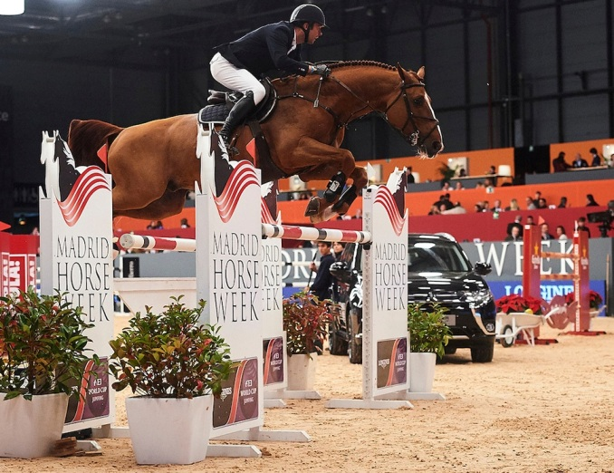 SPECTACULAR HORSE SHOW IS COMING TO TOWN