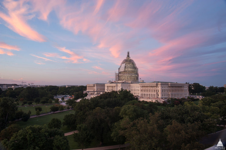 STATESIDE STORIES: Capitol Dome's Unique Beauty in Shrouds