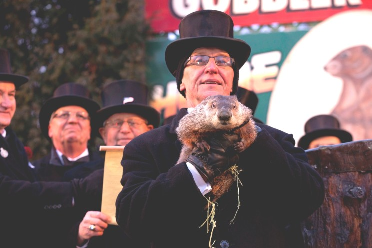 STATESIDE STORIES: Groundhog What?