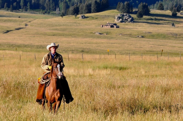 STATESIDE STORIES: A Cowboy's Prayer