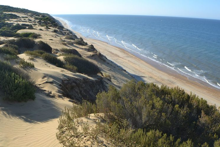 A GUIDEPOST REPRINT: THE DOÑANA NATURAL PARK 3O YEARS AGO (The Park's Still There!)