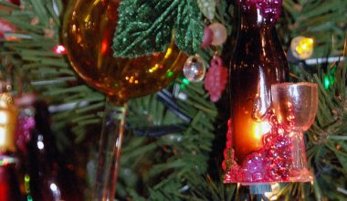 HOW TO TASTE, SERVE AND CONSERVE WINE AT HOME THIS CHRISTMAS