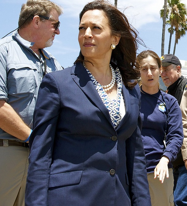 A Stateside Story Kamala Harris Biden S Pick For Vice Presidential Candidate