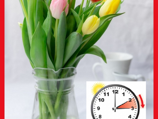 YA ES PRIMAVERA IN SPAIN. SMILE & DON'T FORGET TO ADVANCE THE CLOCK!