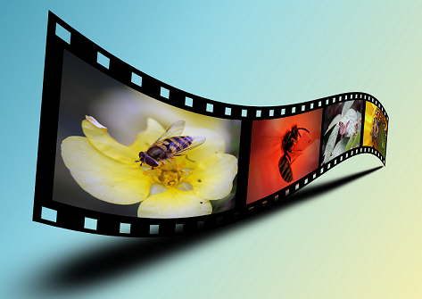 ANOTHER WAY FILM FESTIVAL: HERE'S YOUR CHANCE TO BE A MOVIE PRODUCER, DIRECTOR OR SCRIPTWRITER, OR ALL OF THE ABOVE!